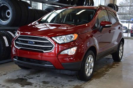 2019 Ford EcoSport SE 4WD for Sale  - MT-19346  - Alliance Ford