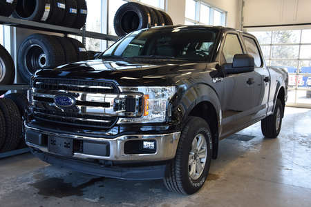 2020 Ford F-150 XLT 4WD SuperCrew for Sale  - MT-20079  - Alliance Ford
