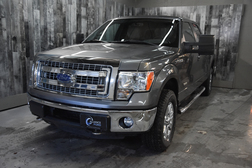 2013 Ford F-150 XLT 4WD SuperCrew  - 19420B  - Alliance Ford